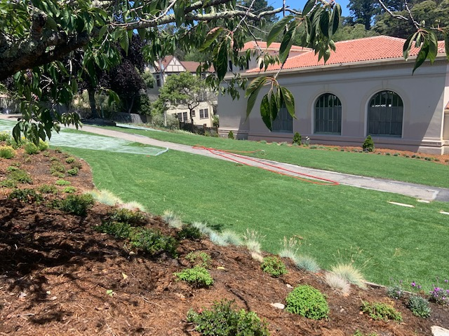 Forrest Hill Station with new sod and irrigation system