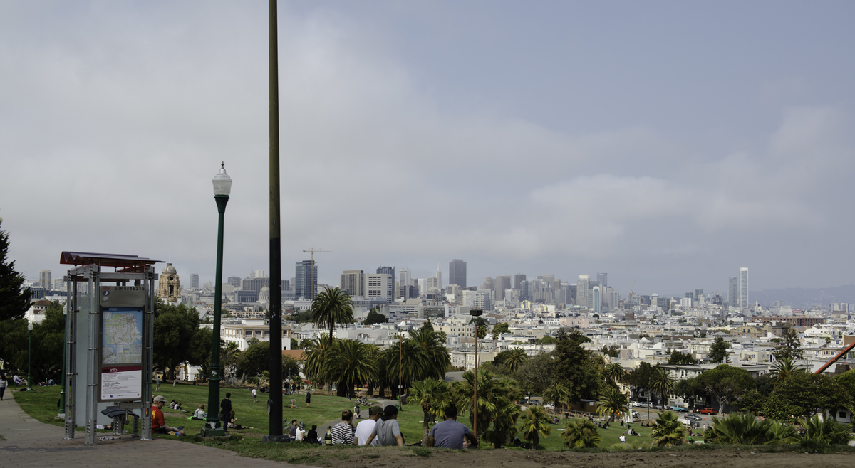 Dolores Park's Panoramic View