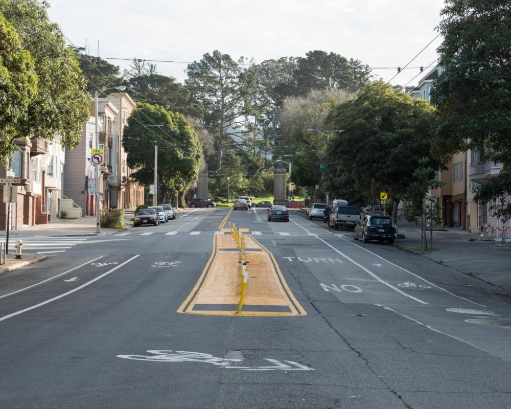 Arguello Boulevard Safety Project