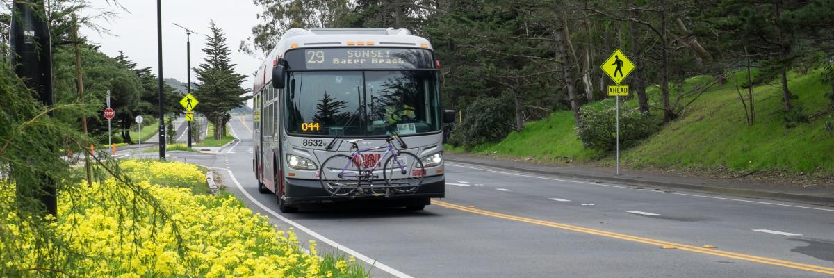 29 Sunset bus