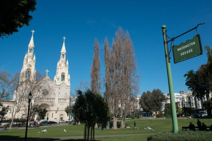 view of washington square park and church in north beach