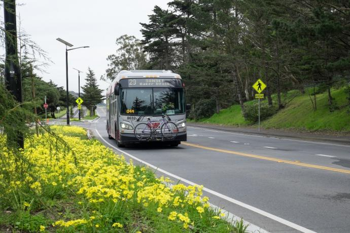 Photo of the 29 Sunset bus
