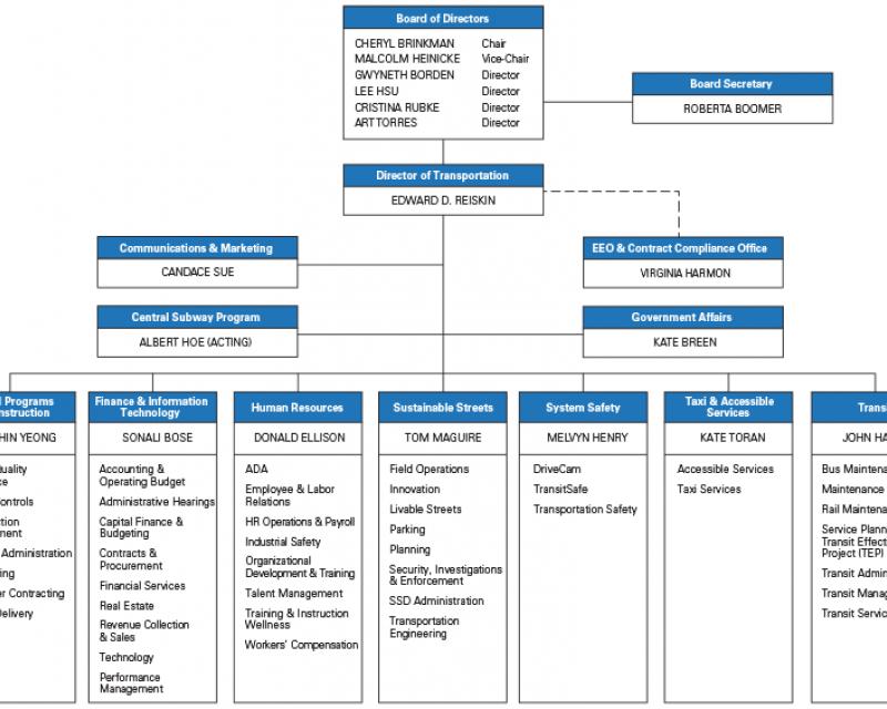 organization chart diagram