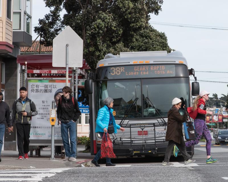 Pedestrian Program