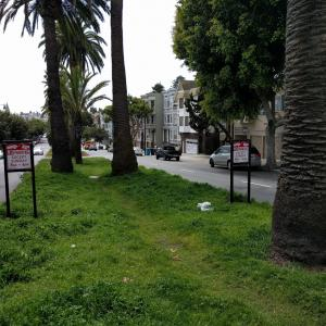 Dolores Street Median with parking signs
